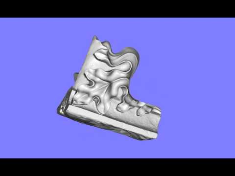"3D Scan ""Hogel"""