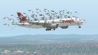 Boeing 777 FORCED To Emergency Landing Due To BirdStrike | X-Plane 11