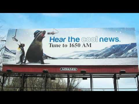 Adams Outdoor Lehigh Valley // Meet Penguin and Seal