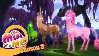 Ghosts Unicorns of the black forrest - Part 3 - Mia and me Season 3