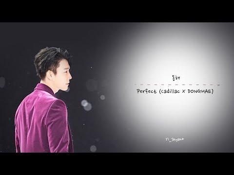 [韓繁中字]  東海(동해/Donghae) - Perfect  [ Donghae X Cadillac 廣告曲]