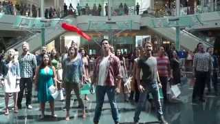 Les Misérables Flash Mob - Orlando Shakespeare Theater