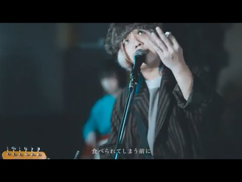 ChroniCloop 『東京メイビー』 Live Clip