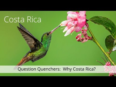 Costa Rica Question Quenchers: Why Costa Rica?