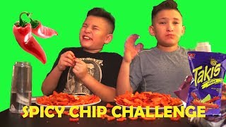 TWINS SPICY HOT CHIP CHALLENGE!!!!!!