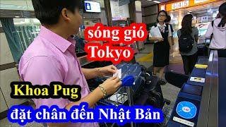 Sóng gió Tokyo - Khoa Pug xách ba lô qua Nhật Bản bay ngay 55 triệu - Intercontinental Tokyo Bay
