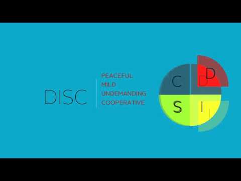 DISC Assesment Tool Overview