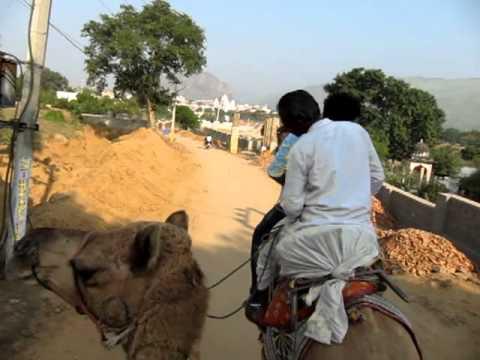 India Tour by Crocus Travel Pvt Ltd