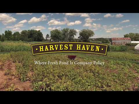 Joel Chesebro – Harvest Haven