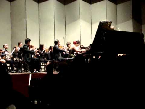 Edvard Grieg - Piano Concerto in A minor, Op. 16 (Part 1)