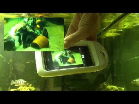 iDry iPhone 4 4S Unterwasser Video Aufnahmen Test Unboxing