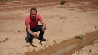 Ecosia in Burkina Faso: Episode 1