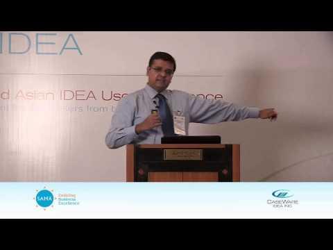 Using Idea For Identifying Fraud and Irregularities Case Studies
