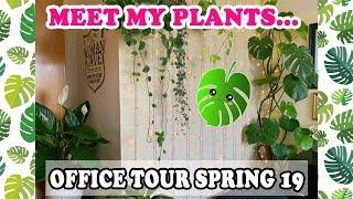 MEET MY PLANTS! 🌿🌺🌵OFFICE TOUR SPRING 2019 💚