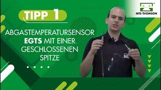 TIPP 01 Abgastemperatursensor EGTS mit einer geschlossenen Spitze