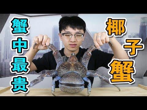 【大祥哥來了】試吃5000元一隻的椰子蟹!蟹膏竟然完爆皇帝蟹!