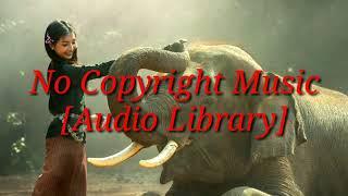 No Copyright Music || The_Shade