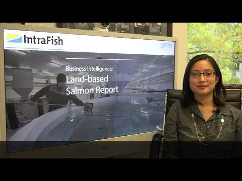 Business Intelligence: Land-Based Salmon