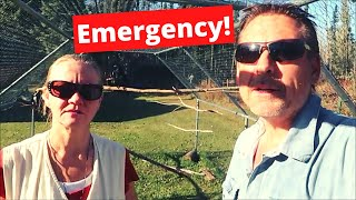 Emergency on the Homestead
