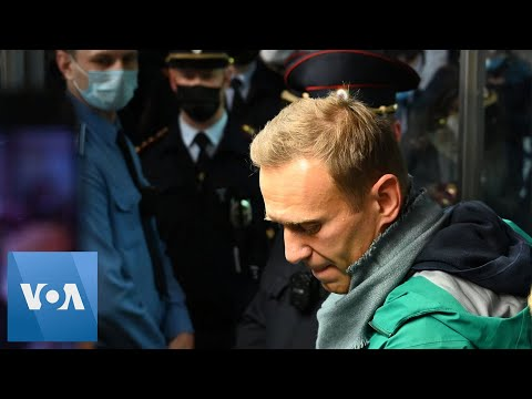Russian Police Detain Navalny Upon Arrival in Moscow