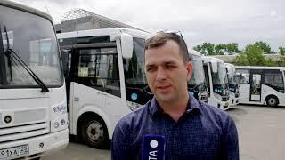 Презентация новой партии автобусов Vektor next прошла в Артеме