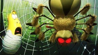 LARVA - Aranha | 2018 Filme completo | Dos desenhos animados | Cartoons Para Crianças