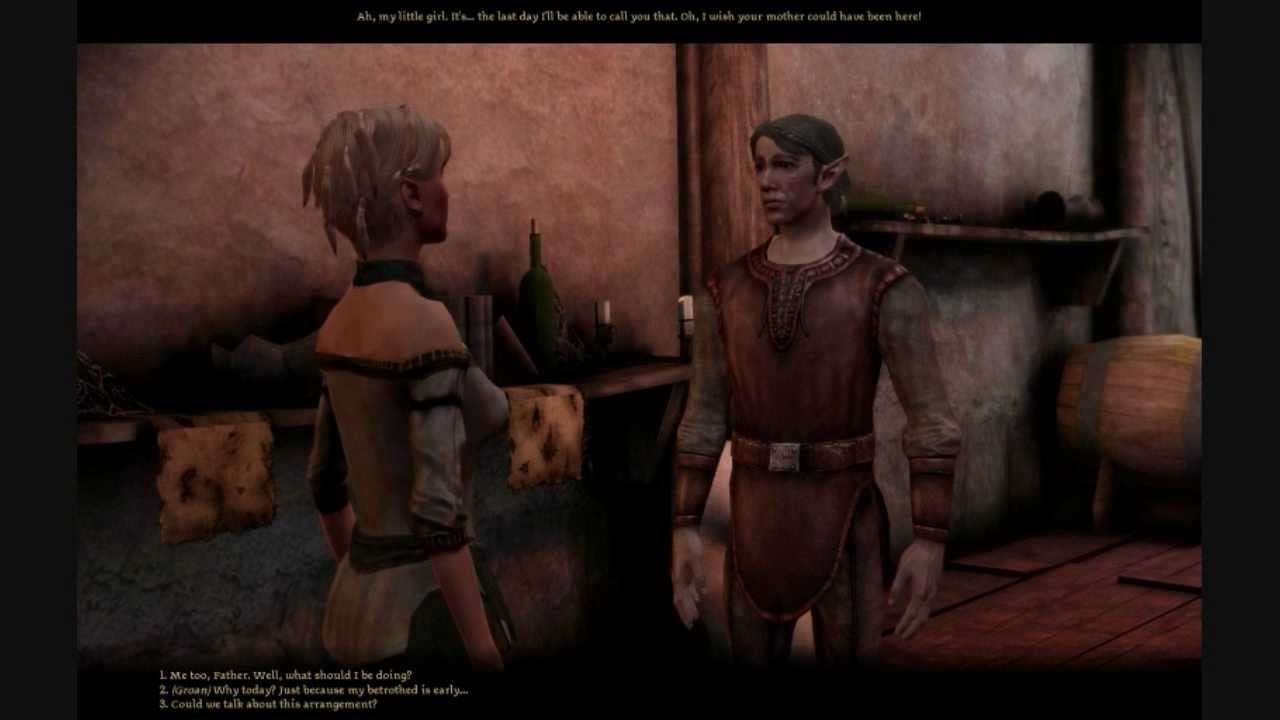 Dragon Age Origins: City Elf Part 1: Wedding Day