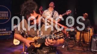 Alaracos - Alaracos - Marginata (Live)