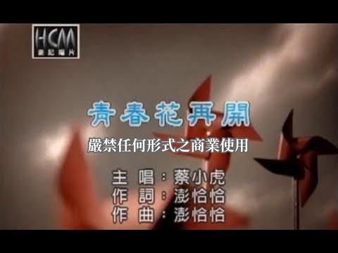 蔡小虎-青春花再開(練唱版)