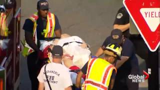 Congressman Steve Scalise stretchered out following shooting at baseball diamond in Virginia