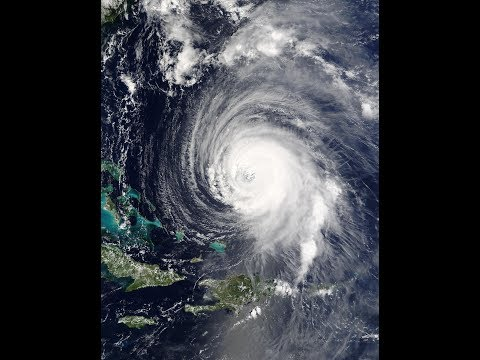 Hurricane Prep & Survival