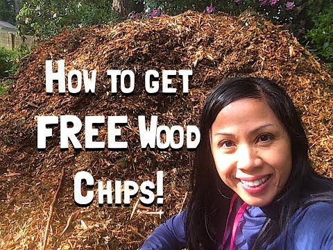 How to Get FREE Wood Chips!