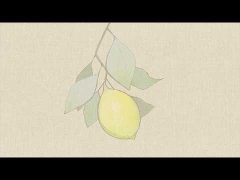 米津玄師/Lemon  Cover【アダチケンゴ】
