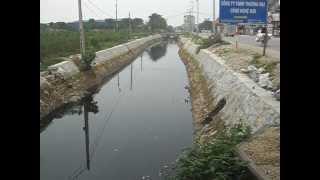 Ô nhiễm môi trường: kênh tiêu nước Thường Tín HN 24/11/2012-rutgon