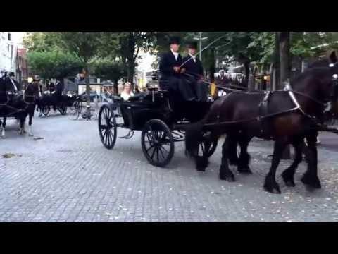 Alle ambassadeurs maken koetsrit door Amsterdam