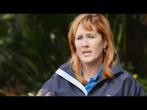 Jody Westberg - Caring for SeaWorld's Creatures - Guides to the Good Stuff