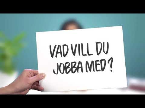 2. Sommarjobb i Stockholms stad: Så ansöker du