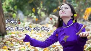 Ô hay !! Buồn vương cây ngô đồng - tiếng hát Thao Ho