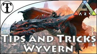 Fast Wyvern Taming Guide :: Ark : Survival Evolved Tips and Ticks