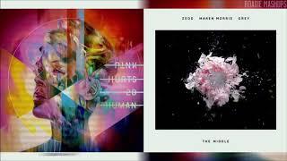 Cash Cash, Zedd, Grey ft. Maren Morris, P!nk - Pretend In The Middle | MASHUP