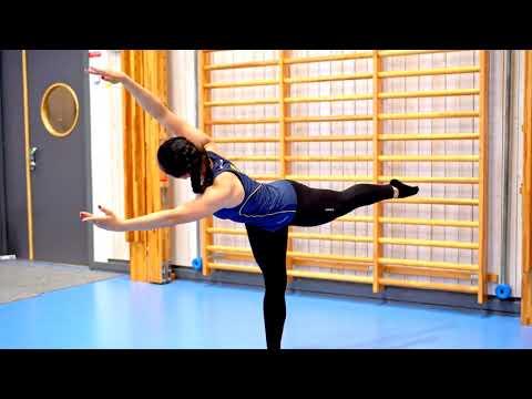 Gymnastiskt Basträningsprogram ALLA ÖVNINGAR