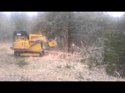 Land lot clearing by Arbor Masters
