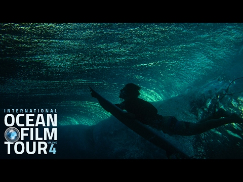 Int. OCEAN FILM TOUR Volume 4 | Official Trailer