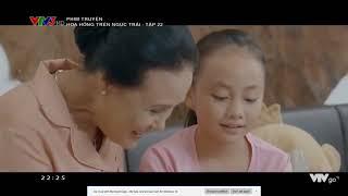 Hoa Hồng Trên Ngực Trái Tâp 24 Full HD Bản Chuẩn    VTV3