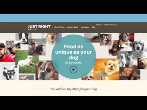 Just Right by Purina - A Video Case Study