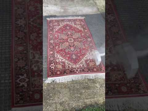 Dusting a Persian Rug