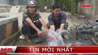 ⚡ Tin mới nhất | Xuất hiện thêm một giếng nước tự phun trào khỏi mặt đất
