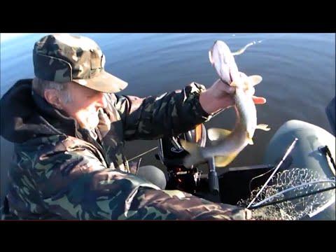 на что ловить рыбу на р. десне