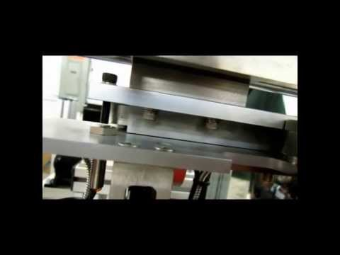 Performance Feeders Custom Part Inspection Conveyor System