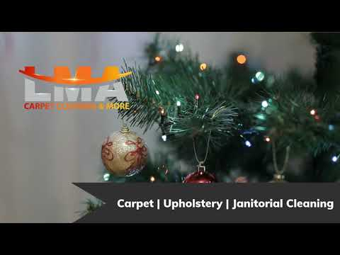 Professional Christmas Cleaning Services San Antonio